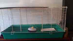 Rodent or Small Animal Cage. $80