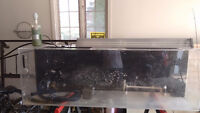120 gallon tank with accessories