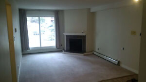 1 bedroom newly renovated apartment style condo
