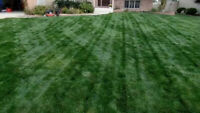 London Lawn Mowing -- Grass Cuts -- Lawn Cutting -- Landscaping