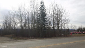 0.43 Acre lot in prime central location