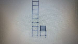 [WANTED]Telescopic Extension Ladder