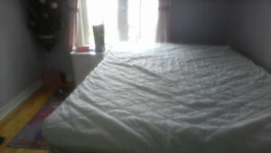 white glossy queen bed with lots of storage capacity
