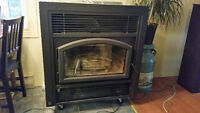 BIS Ultima Wood Burning Insert Fireplace With Chimney