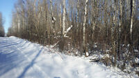 ***Build Your Dream Cottage! Well Located 2 Acre Treed Lot!***