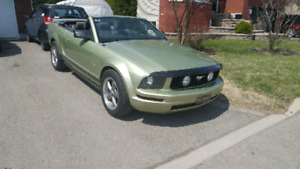 Mustang 2006