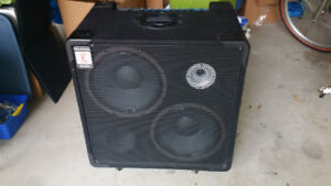 Bass Guitar Amplifier and Monitor