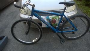 2001 Norco Wolverine Mountain bike