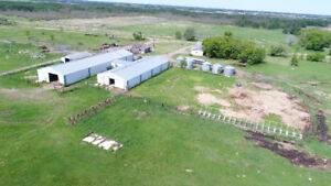 Home Qtr & 10 Parcels Farmland-McAucley, MB-Unreserved Auction