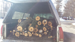Truck bed - Green Maple