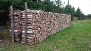 Bois de chauffage/ fire wood