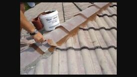 Roof/Brickwork Repointing