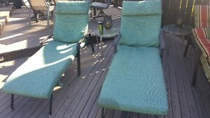 Two lounger cushions