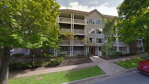 REDUCED - Large 1 Bedroom Southend Halifax July 1st