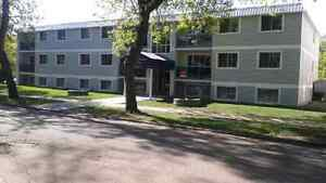3 bedroom apt for rent at Colorado plaza
