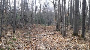 188 Acres Hunting property for sale chemin Rang A otter Lake,QC Gatineau Ottawa / Gatineau Area image 6