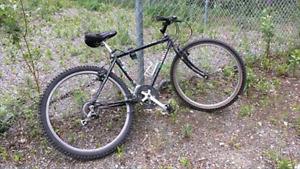 Black Minelli Bike Stolen!!