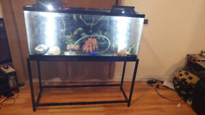 55 gallon , stand and filter