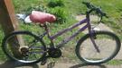 "Rio Maxima 24""wheels girls/ladies bike"