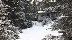 Cabin for Sale - 1 acre backing on River