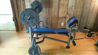 Weight bench (incl. 80 Lbs of weight ; max 450 Lbs capacity)