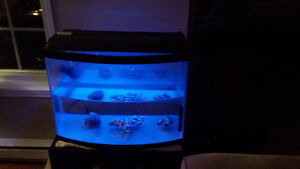 Aquarium Facade bombé 24x18x 12.5