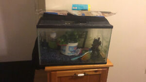 Fish tank approimently 10 gallon
