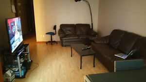 Roommate wanted to share a nice three bedroom house 460