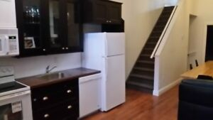 DOWNTOWN 4 BEDROOM APARTMENT AVAILABLE