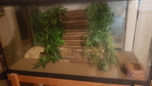 30gal repti setup with stand 80$ obo
