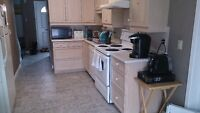STUDENT HOUSE FOR RENT, 4 BEDROOMS, WATERLOO LAURIER UNIVERSITY