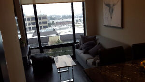 ICON BOND suite sublet May to August