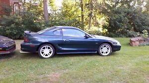 1995 mustang  West Island Greater Montréal image 2