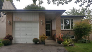 2 Bedroom/2 Washroom Main Floor for Rent in Dixon Blvd Newmarket
