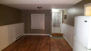 One bedroom basement apartment. Pets welcome!