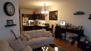 1 bedroom condo for rent available Sept 1,15 or Oct 1