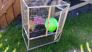 Cage for rat, hamster etc with everything