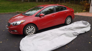 All-Weather Car Cover