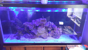 Selling 90g fishtank and stand
