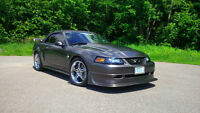 2004 Ford  Mustang dp GT Steeda Q400