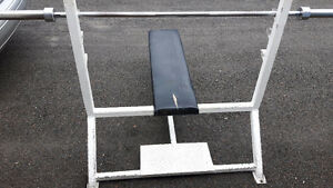 Commercial Bench Press/Bar/Weighs