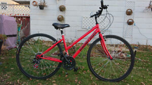 Commuter Bike with dropped frame