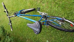Raleigh Tarantula bike