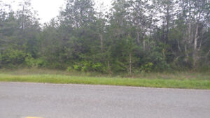 I have clients looking for building lots in Napanee.