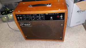 Piggy guitar amp