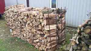 Firewood for sale. Elm Kitchener / Waterloo Kitchener Area image 3