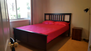 Large room for Rent Mawson Mawson Woden Valley Preview