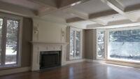 Interior Carpentry Expert