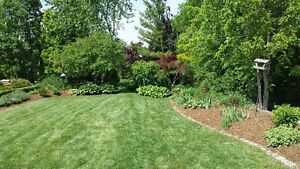 Landscaping for brand new homes London Ontario image 7