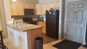 Furnished All-Inclusive 2 Bedroom, 2 Bath Condo For Rent